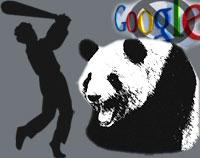Beating up the Panda