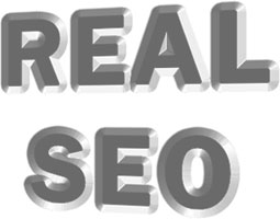 Real search optimisation