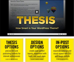 Thesis WodPress theme design