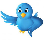 custom twitter bird icon